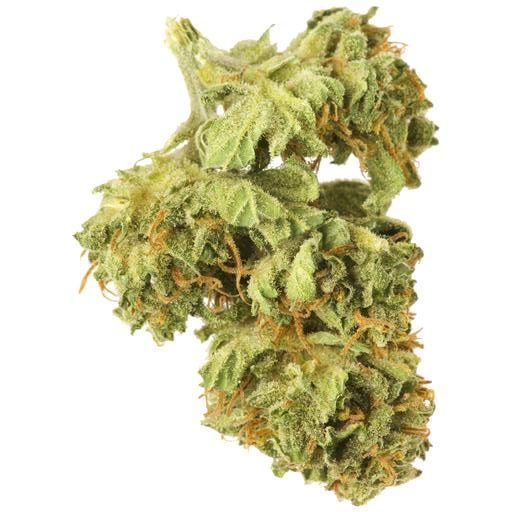 Sativa-Dominant JEAN GUY by Good Supply THC 17-25% CBD 0-0.99%