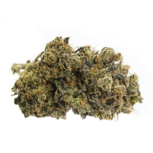 Indica-Dominant UTOPIA (SHISHKABERRY) by DOJA THC 11-19% CBD 0-1%