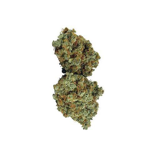 Sativa-Dominant GALIANO (NORTHERN LIGHTS HAZE) by Broken Coast Cannabis THC 15-25% CBD 0-1.99%