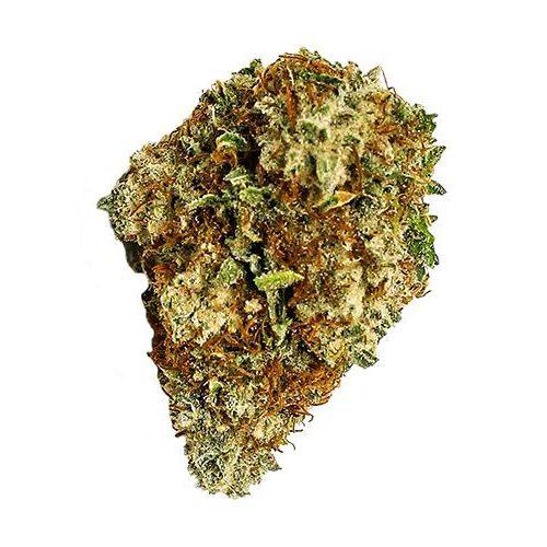 Indica-Dominant SENSI STAR by Spinach THC 15-24% CBD 0-1%