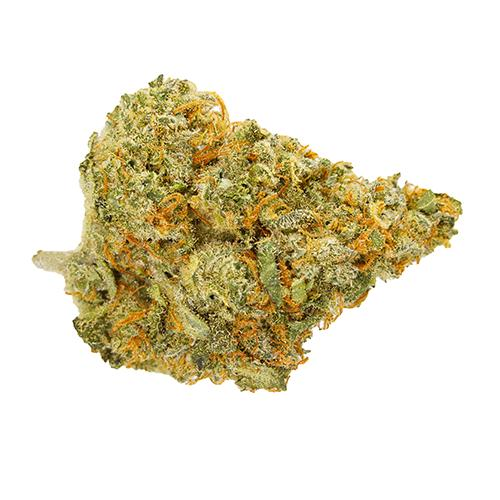Sativa-Dominant CHOCOLOPE by Whistler Cannabis Co. THC 14-18.5% CBD 0-0.05%
