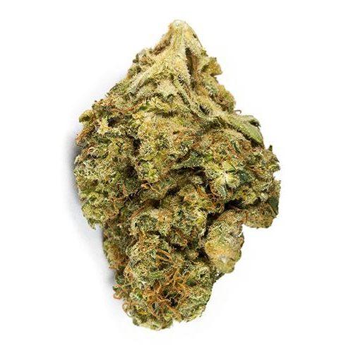 Sativa-Dominant DELAHAZE by San Rafael '71 THC 19-26% CBD 0.02-0.05%