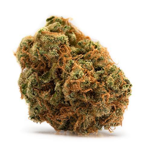 Indica-Dominant BAKERSTREET (HINDU KUSH) by Tweed THC 15-25% CBD 0-0.07%