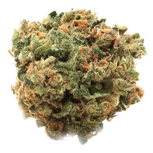 Sativa-Dominant CITRIQUE by Namaste THC 14-19% CBD 0-0.1%