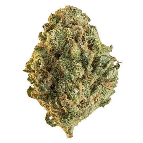 Sativa-Dominant RIO BRAVO (WABANAKI) by Edison THC 17-22% CBD 0-1.99%