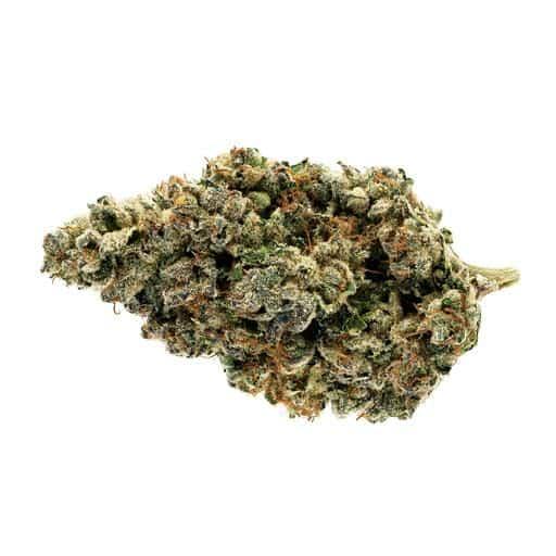 Indica-Dominant SONORA (STARGAZER ) by Broken Coast Cannabis THC 16-26% CBD 0-2%
