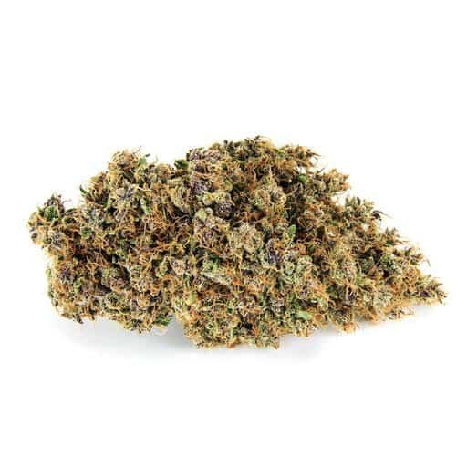 Sativa-Dominant MORESBY by Broken Coast Cannabis THC 12-22% CBD 0-2%
