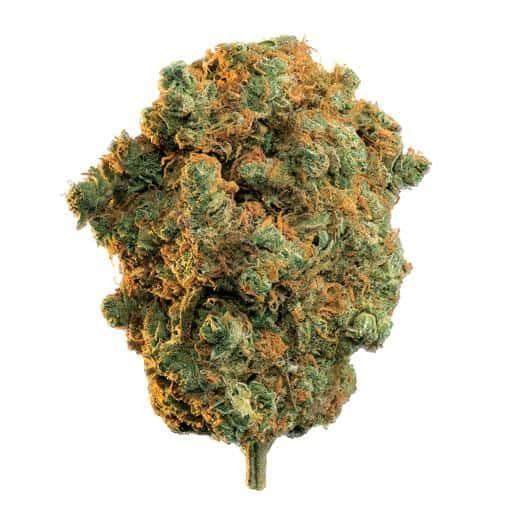 Sativa-Dominant LA STRADA (ACADIA) by Edison THC 15-20% CBD 0-1.99%