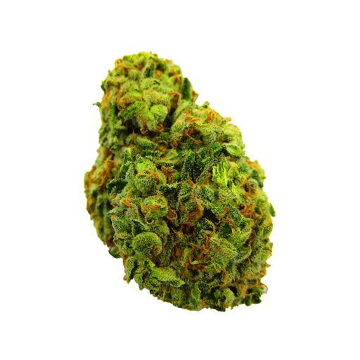 Hybrid GLUEBERRY OG by Benchmark Botanics Cannabis THC 16-24% CBD 0-2%