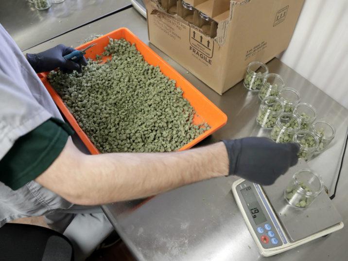 1a Marijuana New Jersey 1 e1553697362509