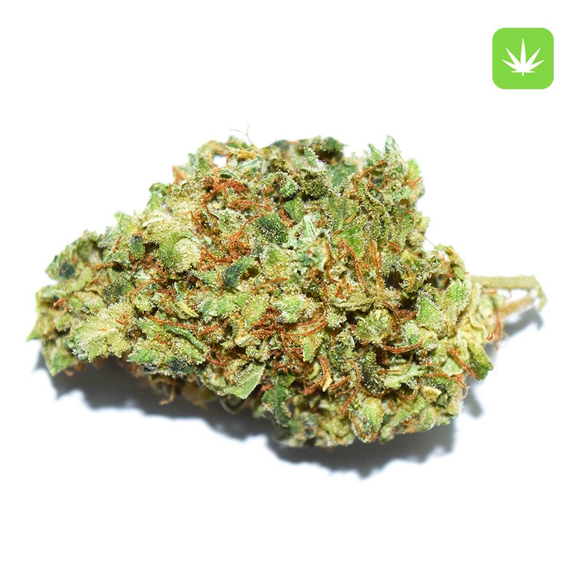 Afghan Kush 1 Cannabis Avenue 1 1