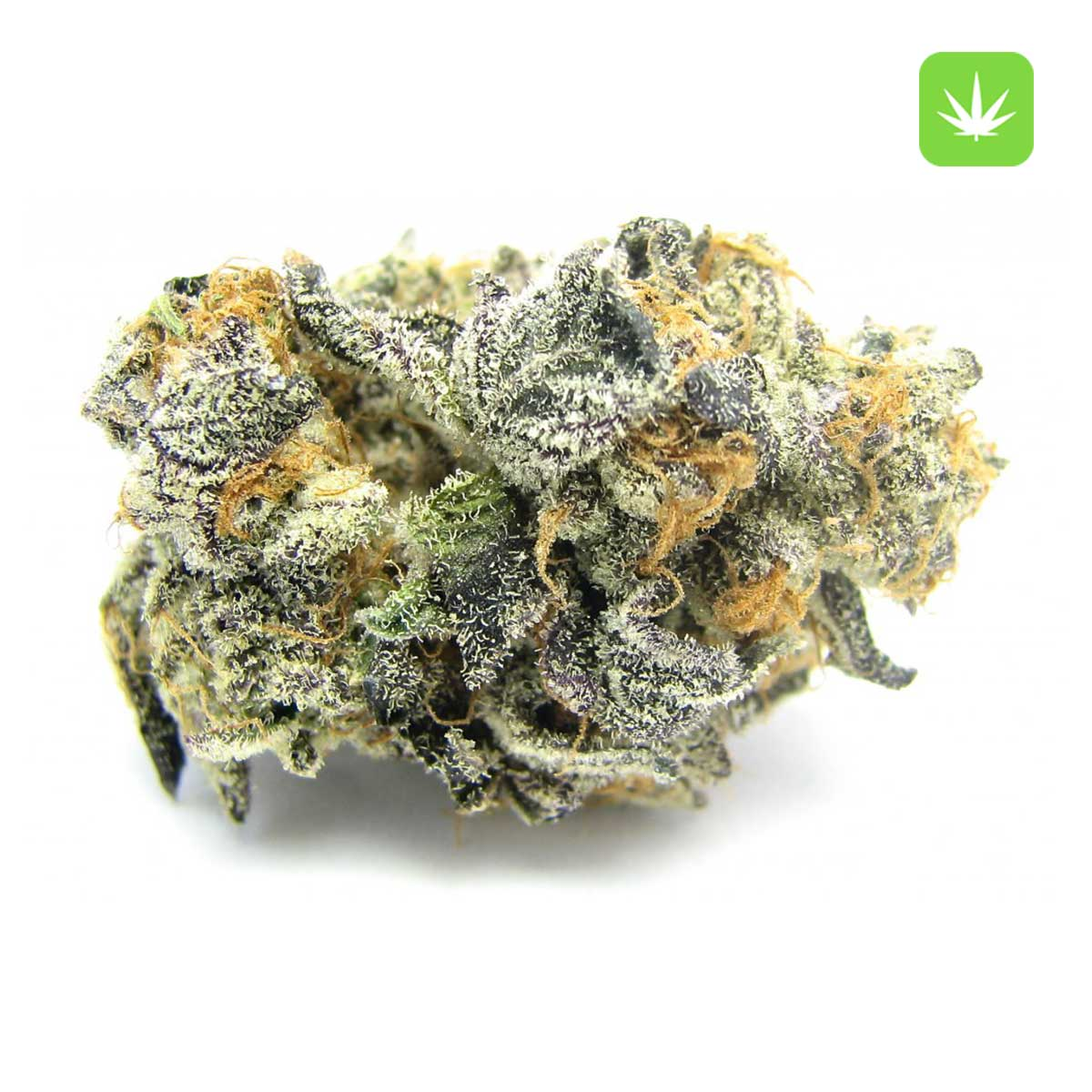 Afghan Kush 1 Cannabis Avenue 1 3