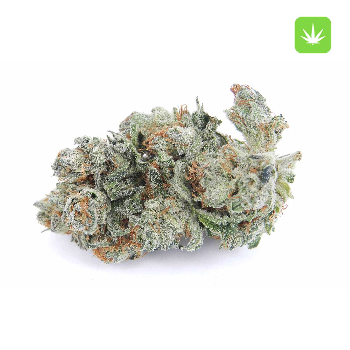 Afghan Kush 1 Cannabis Avenue 1 7