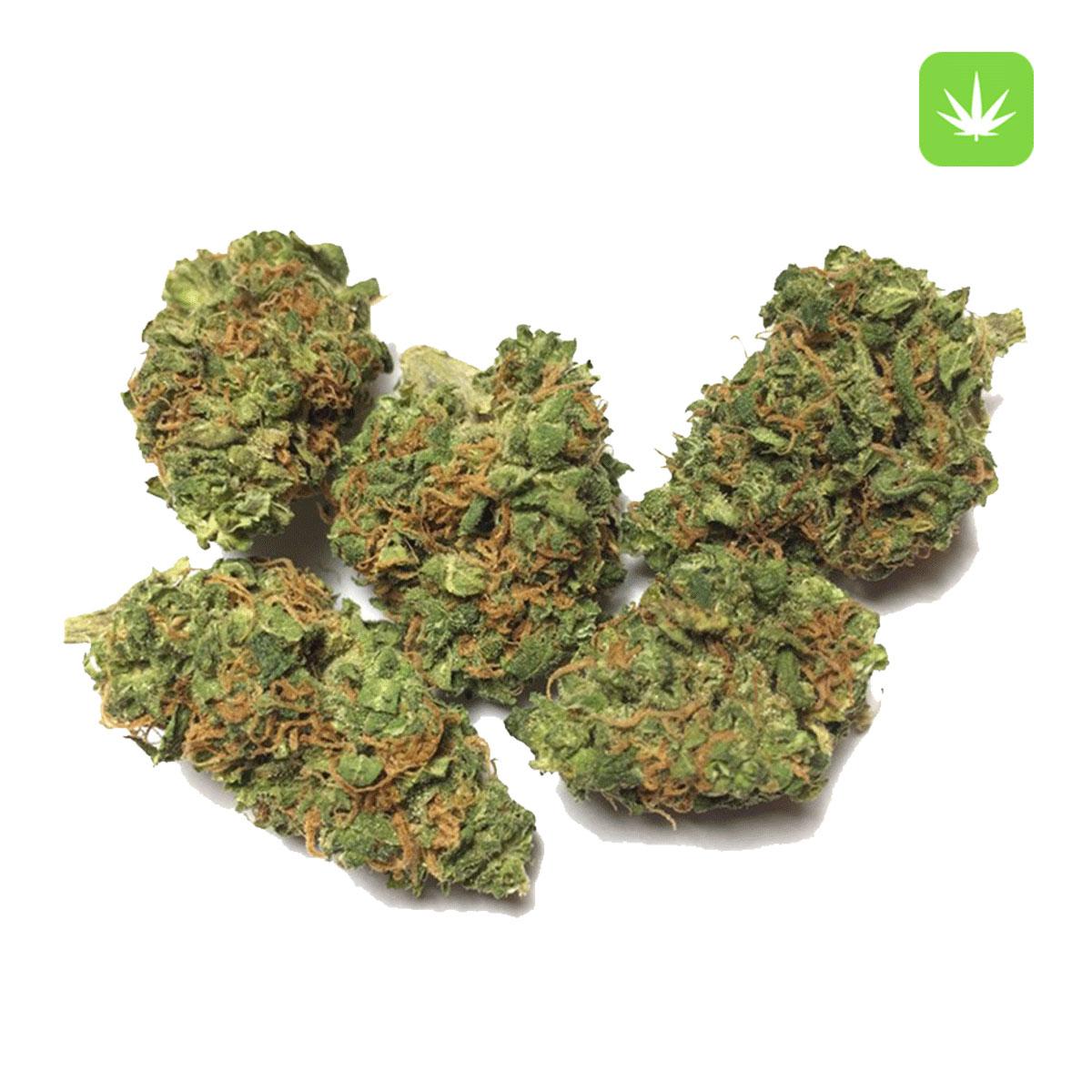Afghan Kush 1 Cannabis Avenue 1