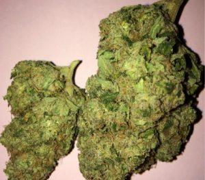 Buy Pineapple Express Marijuana Strain 1 300x263 1