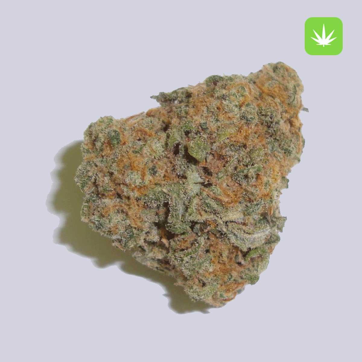 Green Crack Cannabis Avenue 1