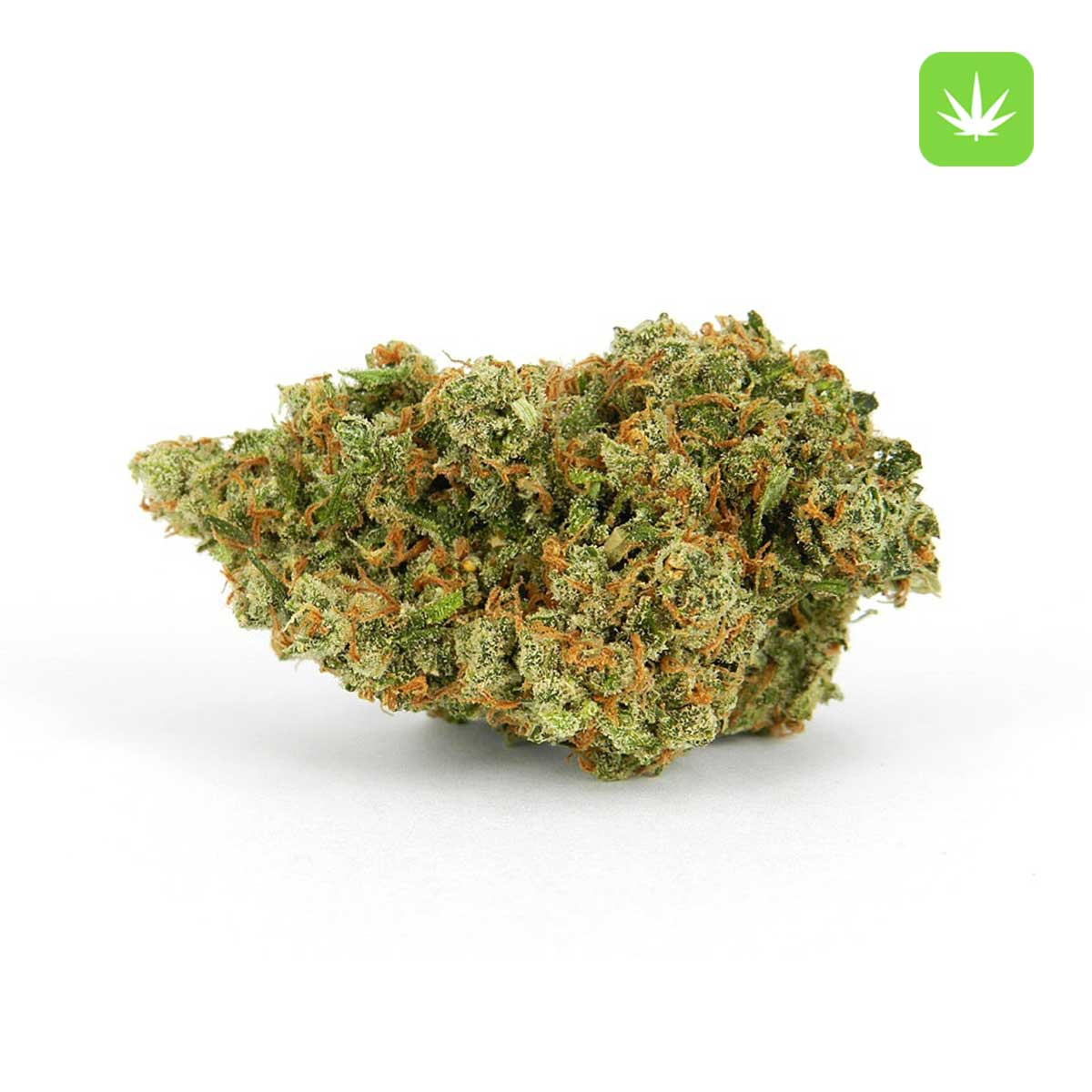 Jack Herer Cannabis Avenue 1