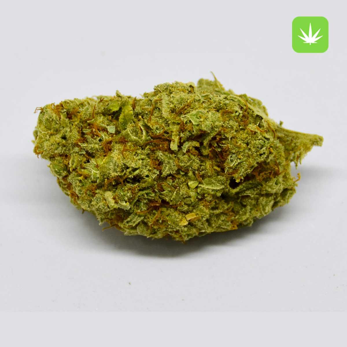 Khalifa Kush 2 Cannabis Avenue 600x600 1 1