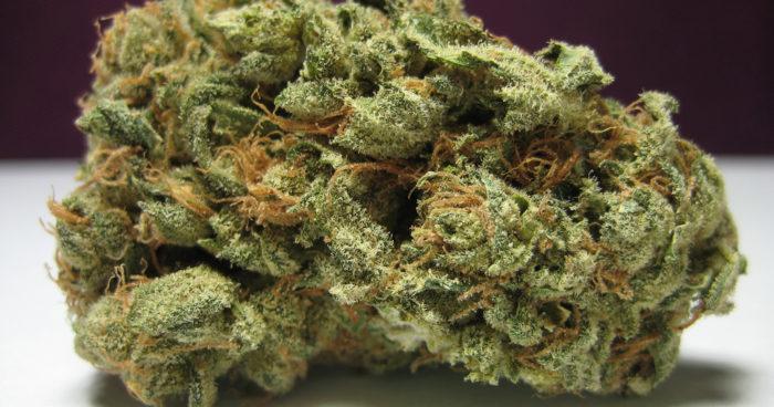 Pineapple Marijuana Strain 700x368 1