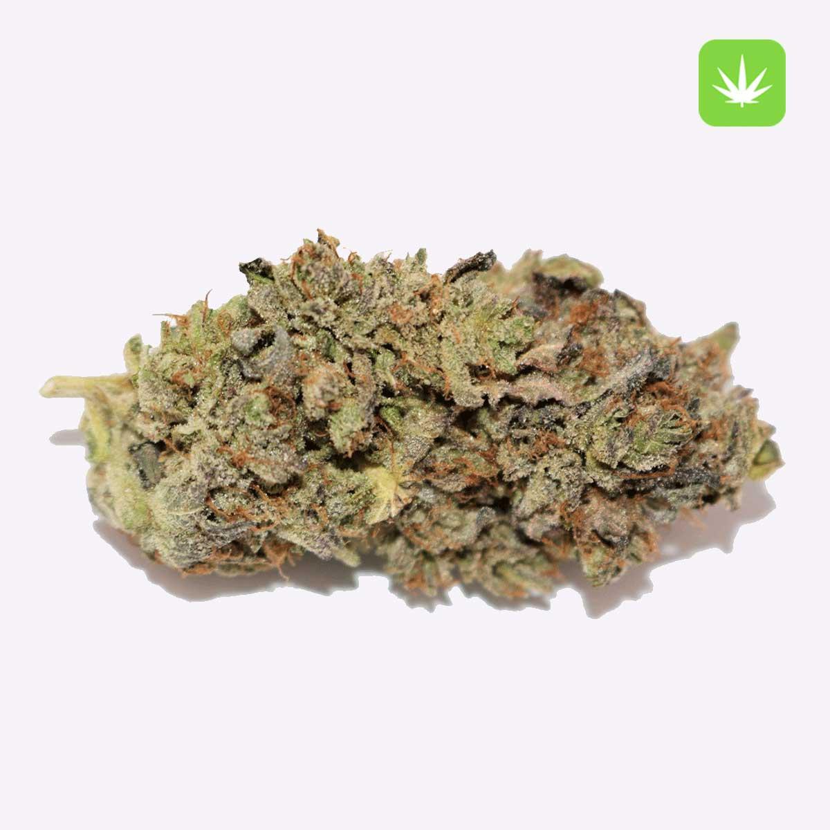 Pink Star CannabisAvenue 1