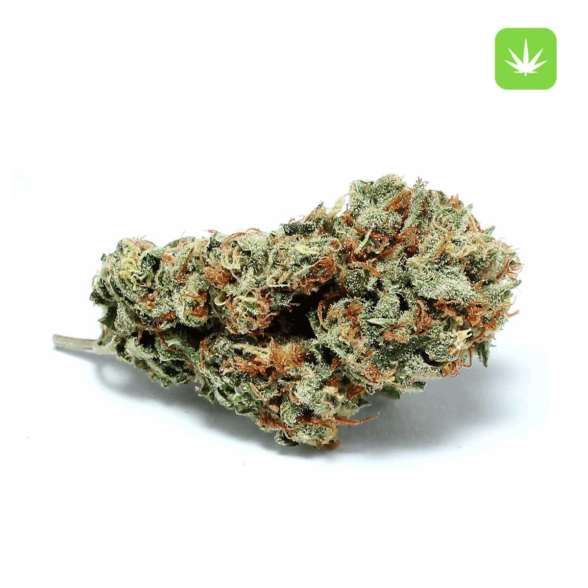Super lemon Haze Small Nugs Cannabis Avenue 2