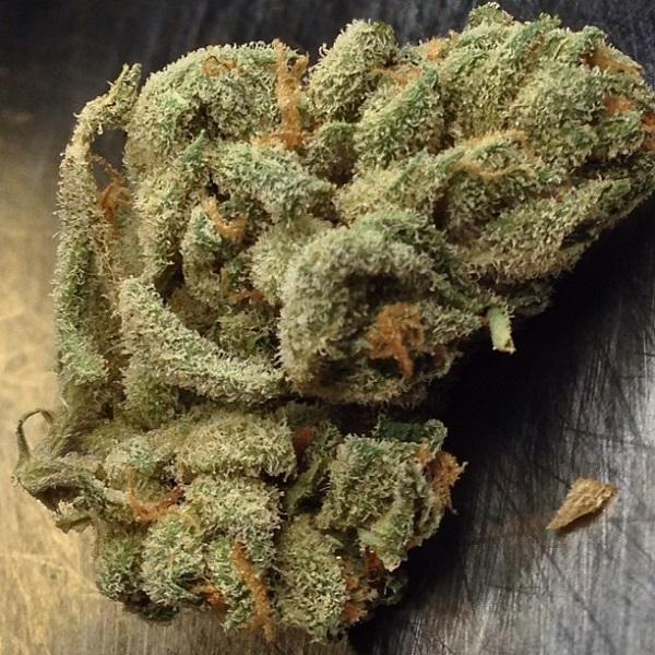 alien bubba marijuana strain 1