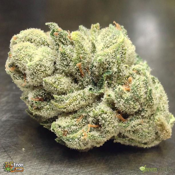alien og bubba aogb weed alien og bubba cannabis thcfinder 67438