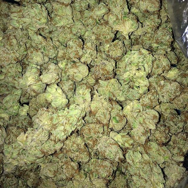 cherry pie og greenworks weed cherry pie weed gw thcf thcfinder 009x812 1