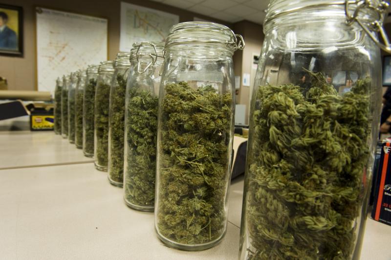 jars of marijuana. the 420 shack2