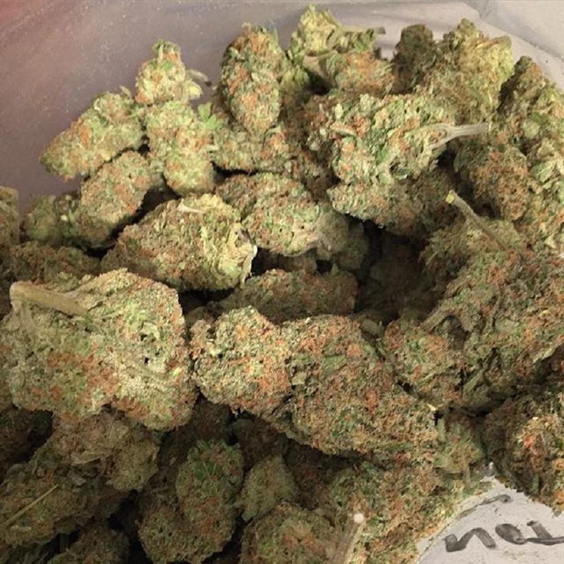 runtz weed online