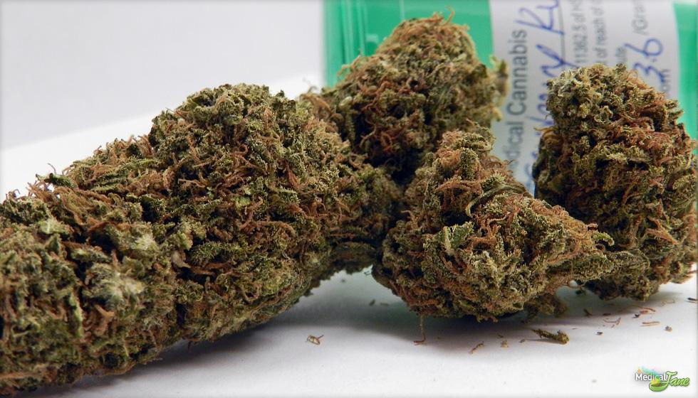 strawberrykushFULL2 1