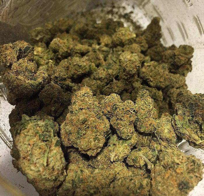 wiz khalifa kush cannabis 700x675 1